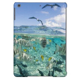 Lagoon safari trip featuring Stingrays Case For iPad Air