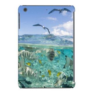 Lagoon safari trip featuring Stingrays iPad Mini Covers