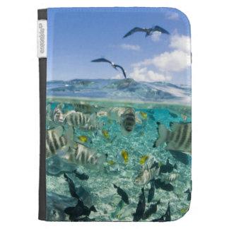 Lagoon safari trip featuring Stingrays Kindle 3 Cover