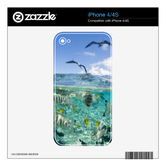 Lagoon safari trip featuring Stingrays Decals For The iPhone 4S