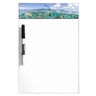 Lagoon safari trip featuring Stingrays Dry-Erase Board
