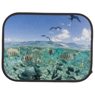 Lagoon safari trip featuring Stingrays Floor Mat