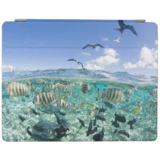 Lagoon safari trip featuring Stingrays iPad Cover
