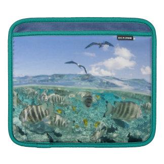 Lagoon safari trip featuring Stingrays iPad Sleeve