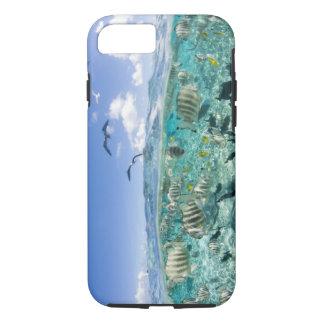 Lagoon safari trip featuring Stingrays iPhone 8/7 Case