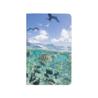Lagoon safari trip featuring Stingrays Journals