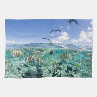 Lagoon safari trip featuring Stingrays Kitchen Towel