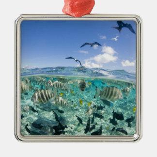 Lagoon safari trip featuring Stingrays Metal Ornament