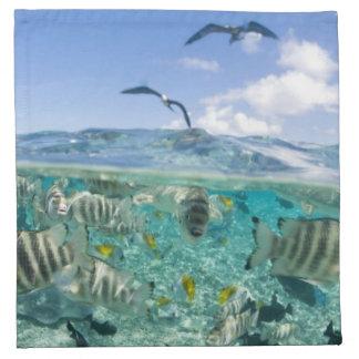Lagoon safari trip featuring Stingrays Cloth Napkin