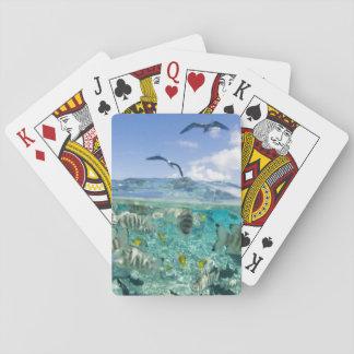Lagoon safari trip featuring Stingrays Poker Deck