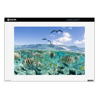 Lagoon safari trip featuring Stingrays Decals For Laptops