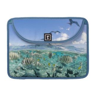 Lagoon safari trip featuring Stingrays Sleeve For MacBooks