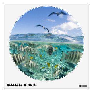 Lagoon safari trip featuring Stingrays Room Sticker