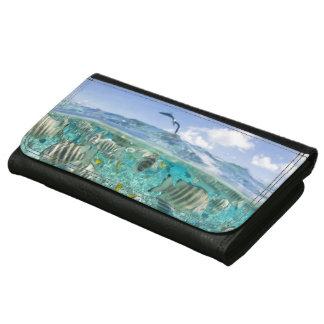 Lagoon safari trip featuring Stingrays Wallets