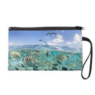 Lagoon safari trip featuring Stingrays Wristlet Purse