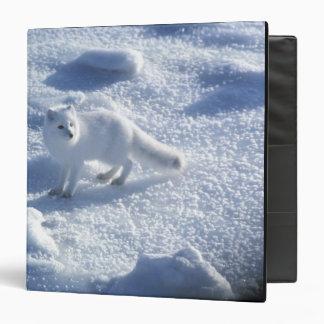 """Lagopus del Alopex del zorro ártico) un zorro Carpeta 1 1/2"""""""