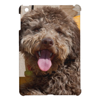 Lagotto Romagnolo Lying On A Wooden Bench Case For The iPad Mini
