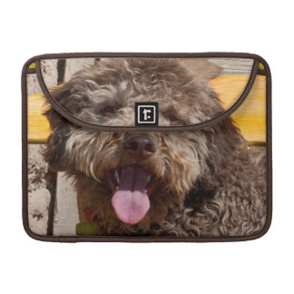 Lagotto Romagnolo Lying On A Wooden Bench Sleeve For MacBooks