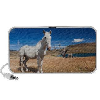 Laguna Azul, paisaje con los caballos iPod Altavoz