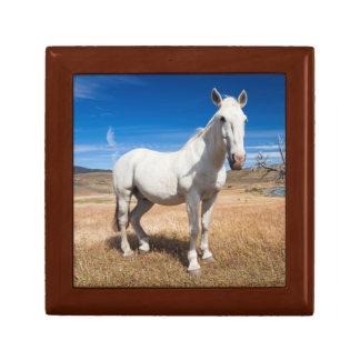 Laguna Azul, paisaje con los caballos Caja De Regalo