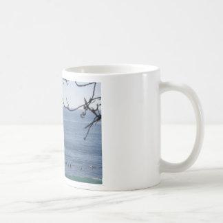 laguna beach surf coffee mug