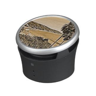 laguna beach vintage speaker