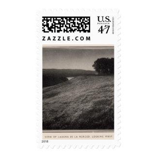 Laguna de la Merced, looking west Postage Stamp