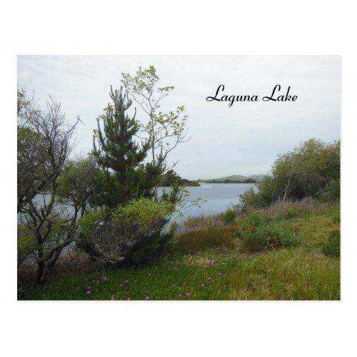 Laguna Lake, San Luis Obispo, after Rain Postcard