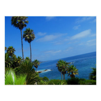 Laguna Palm Trees and Ocean Bliss Poster