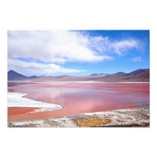 Laguna roja, Laguna Colorada en Bolivia Cojinete