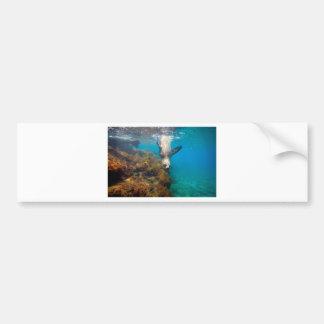 Laguna subacuática al revés del paraíso del león m pegatina para auto