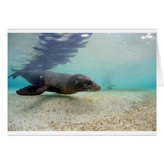 Laguna subacuática del paraíso del león marino tarjeta de felicitación