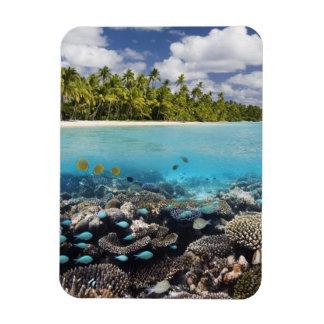 Laguna tropical en el atolón del sur de Ari en Imán De Vinilo
