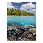 Laguna tropical en el atolón del sur de Ari en Tarjeta Postal