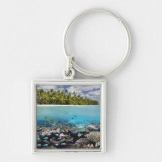 Laguna tropical en el atolón del sur de Ari Llavero Cuadrado Plateado