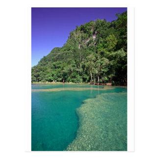 Laguna verde Semuc Champey Guatemala del paraíso Tarjeta Postal