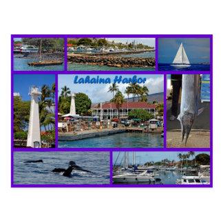 Lahaina Harbor Postcard