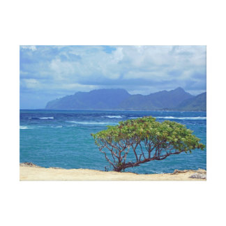 Laie Bay Canvas Prints