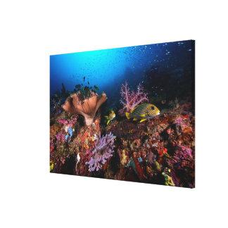 Laja Ampat subacuático Impresión En Tela
