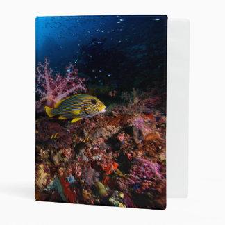 Laja Ampat Underwater Mini Binder