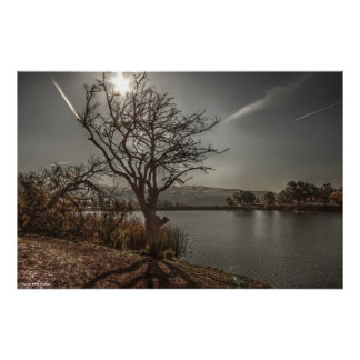 Lake 4 Print