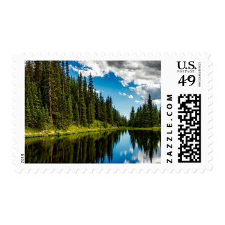 Lake and Evergreen Tree lined Postage Stamp