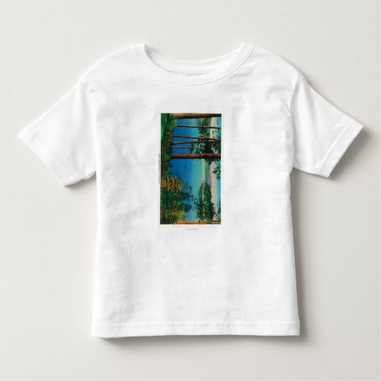 Lake Arrowhead ViewLake Arrowhead, CA Toddler T-shirt