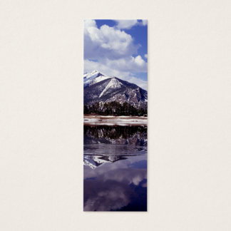 Lake at Rocky Mountains Colorado Mini Business Card