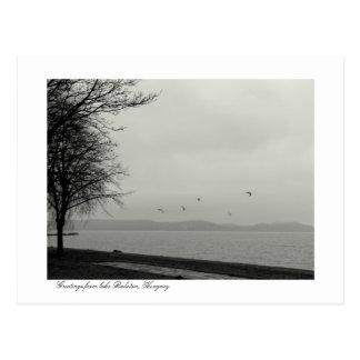 Lake Balaton scenery b&w Post Cards