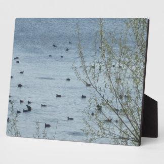 Lake Birds Plaque