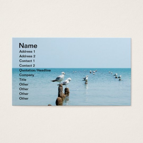 LAKE BUSINESS CARD