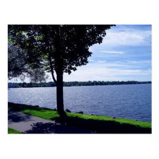 Lake Cadillac, Michigan Postcard