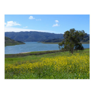 Lake Casitas- Ojai, CA Postcard
