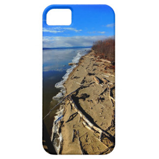 Lake Champlain Driftwood iPhone Case iPhone 5 Cover
